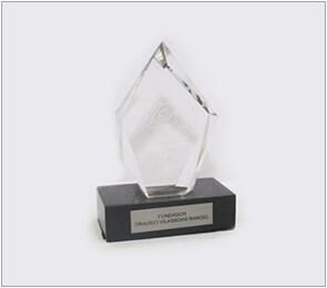 Troféu - Advogado Trabalhista 14